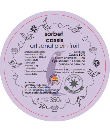 sorbet-maison-cassis-bac-glacier-2.5L