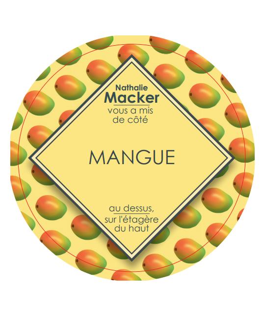 sorbet-maison-mangue-bac-glacier-2-5-L