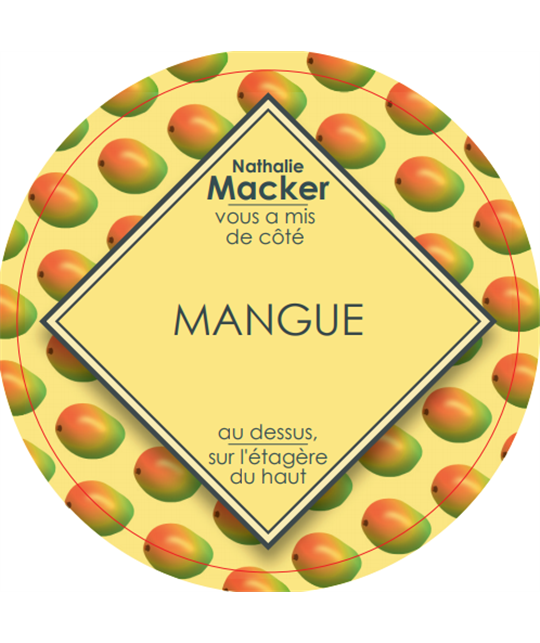 sorbet-maison-mangue-pot-500gr